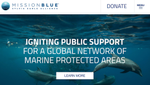 MissionBluemarineprotection