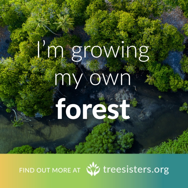 grow-your-own-forest-mangroves